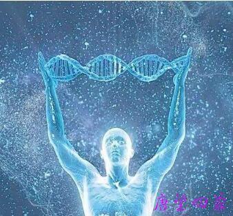 什么是「灵魂DNA」?