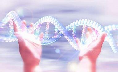 透明量子中显像了基因缺陷!过量的激!蛋白酶素-佩霖的亲身遭遇!