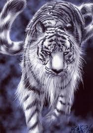 被我当成白虎的善听!幸珍当了亿八年!