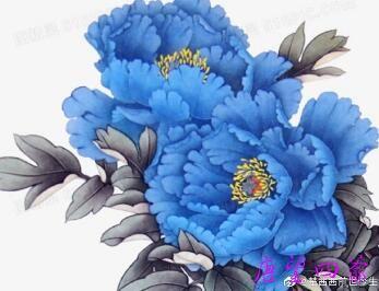 蓝牡丹花夜宴