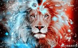 狮子座 一切讲求公平
