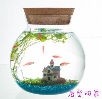 鱼缸的形状与五行的关系