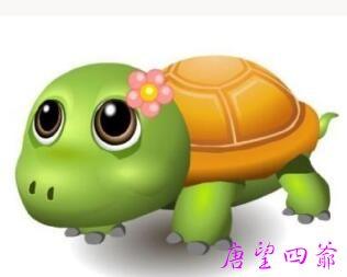 卑微的女魂用龟壳护体