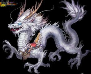 白龙王的混灵宠物
